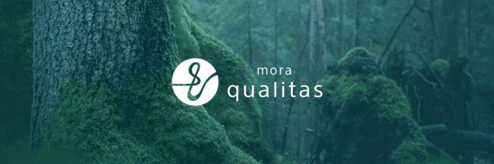 mora qualitas、ハイレゾ対応の音楽ストリーミング配信サービスが無料先行体験開始